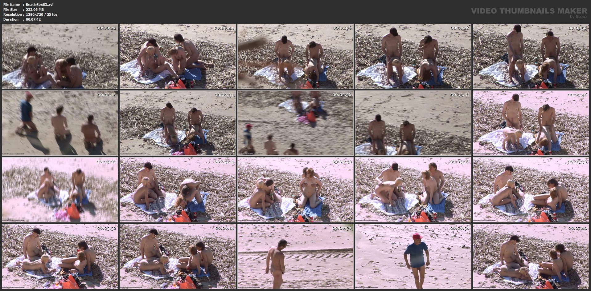 beachsex83-avi