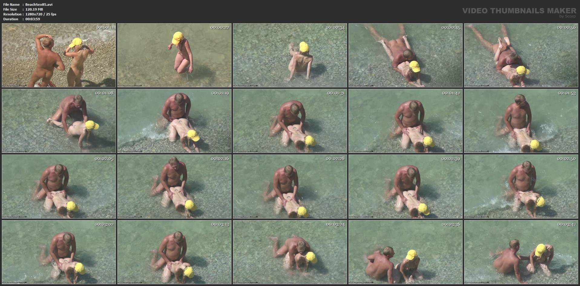 beachsex85-avi