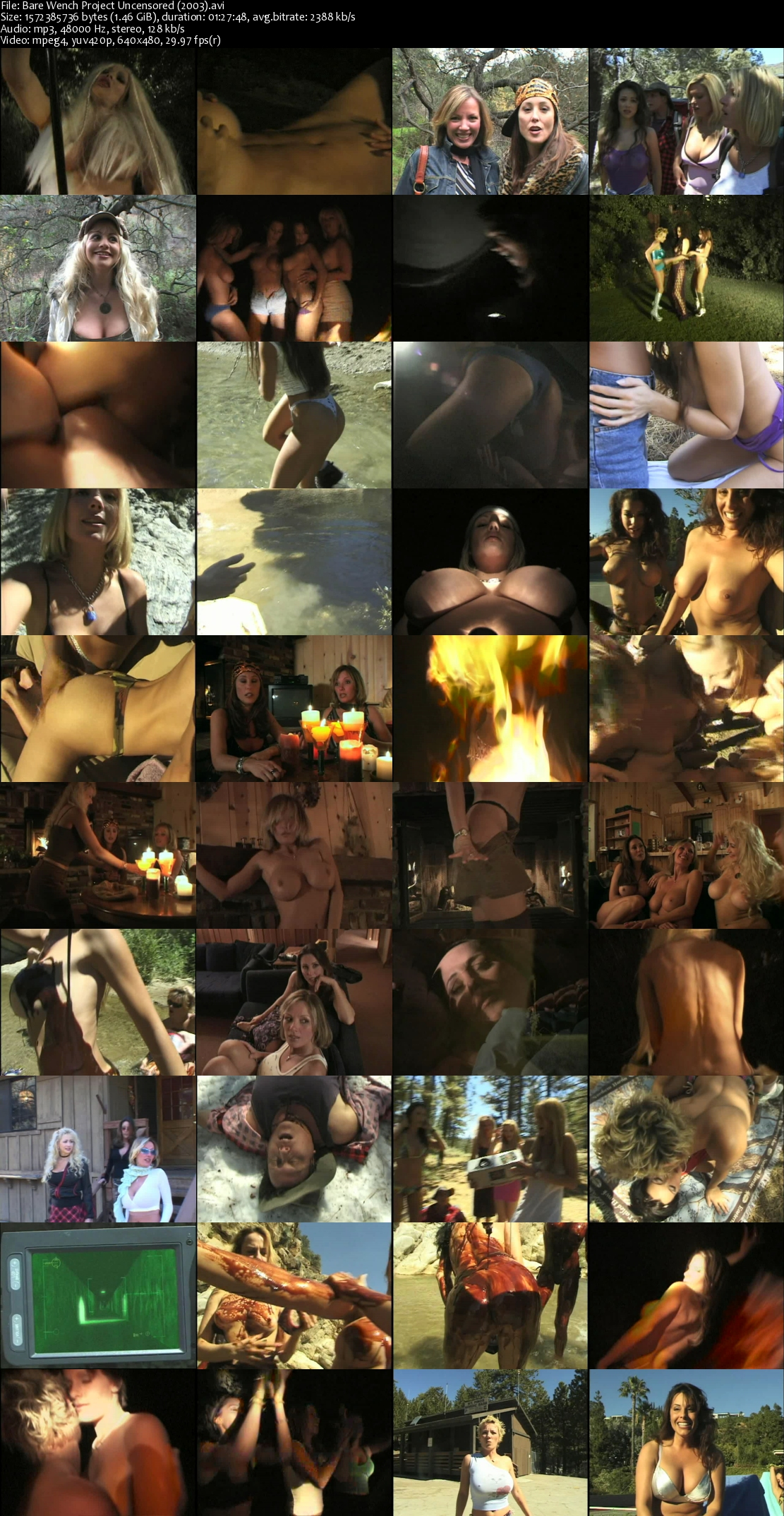 bare_wench_project_uncensored_2003