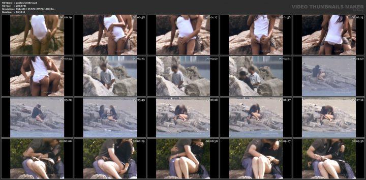 Voyeur public park sex couple