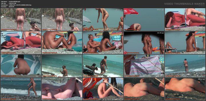 Jackass HD 28