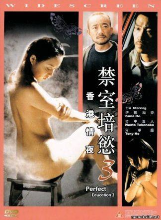 Идеальное Образование 3 / Kanzen-naru shiiku: Honkon joya / Jin shi pei yu, xiang gang qing ye / Perfect Education 3 (2002)