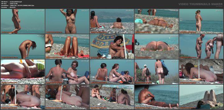 Jackass HD 29